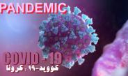 Coronavirus disease (COVID-19) outbreak