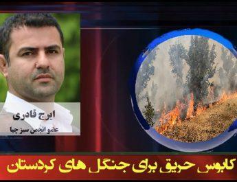 کابوس حریق برای جنگل های کردستان